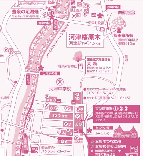 河津桜まつり駐車場
